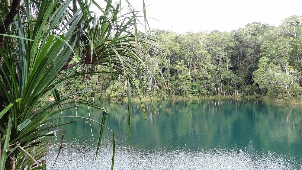 Abenteuer Roadtrip Lake Eacham6