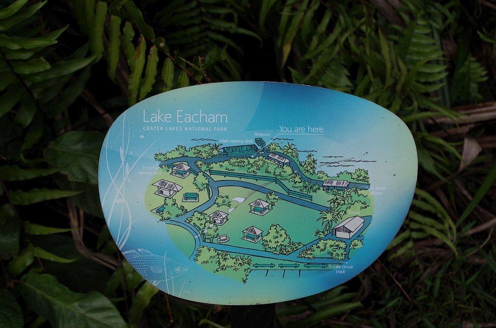 Abenteuer Roadtrip Lake Eacham7