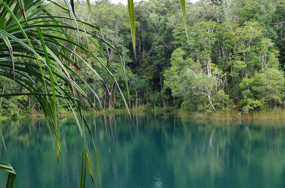 Abenteuer Roadtrip Lake Eacham5