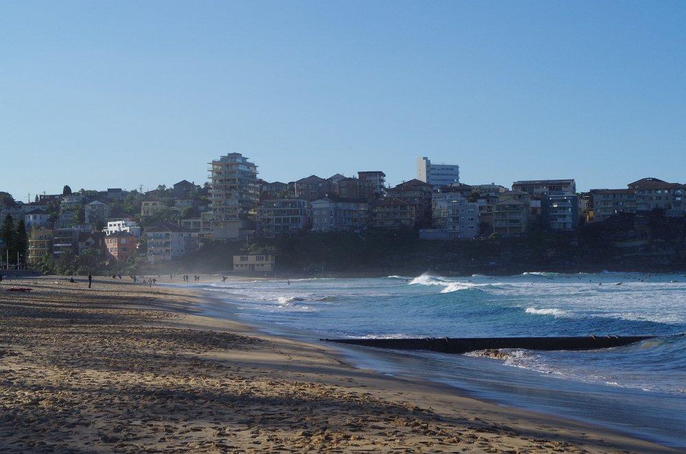 Super Bedingungen für die Surfer hier am Manley Beach