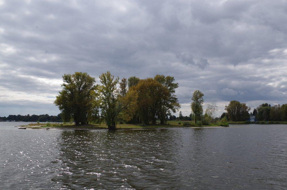 brandenburg019