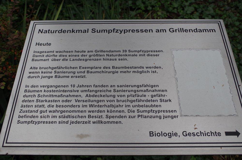 brandenburg099