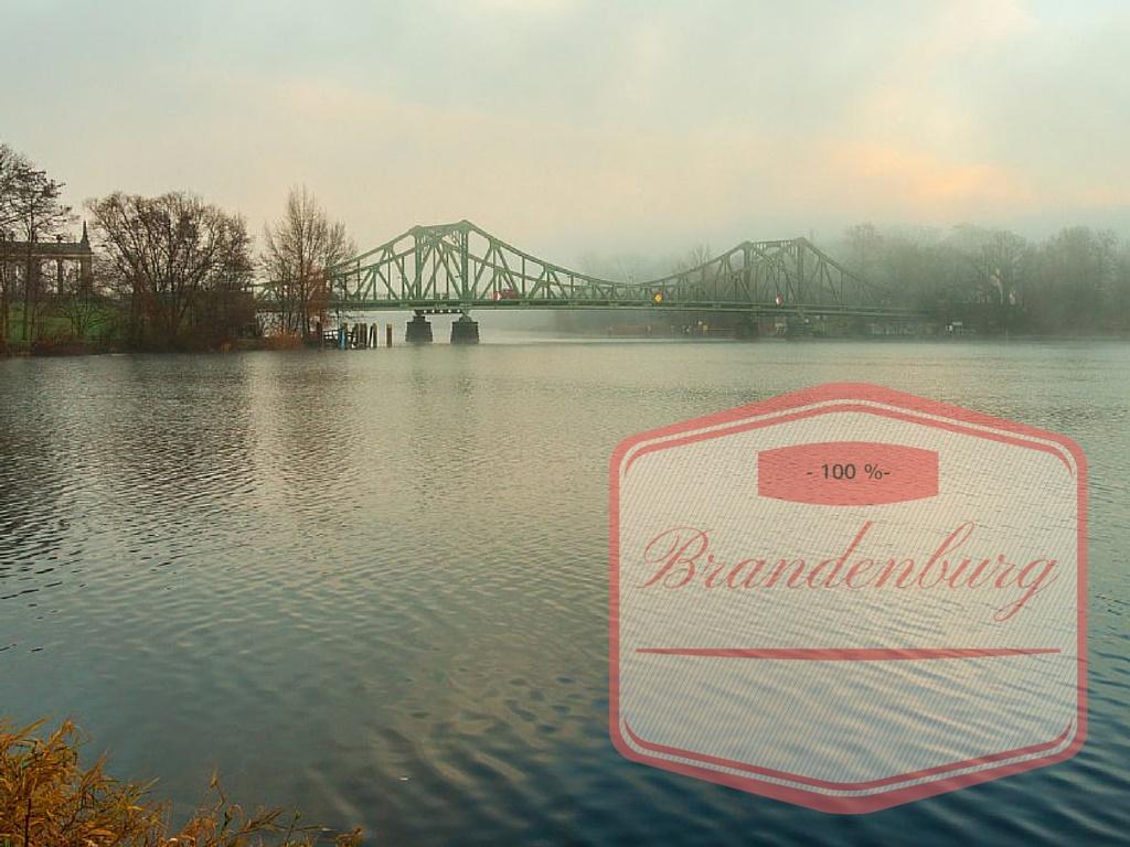 brandenburg101