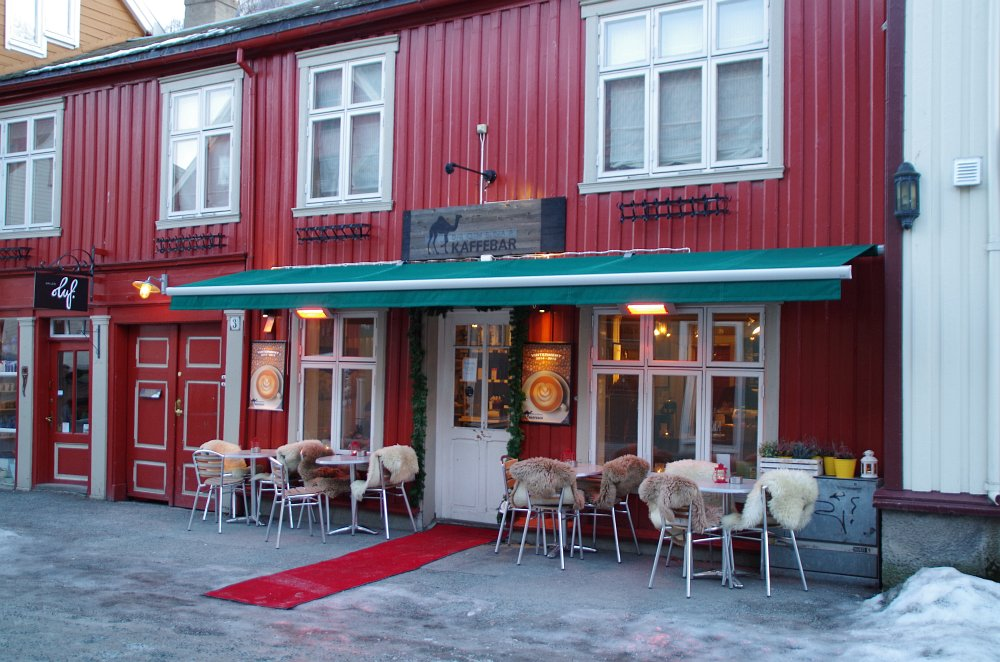 Norwegen Pur133