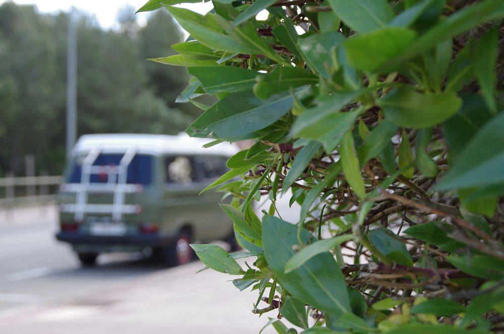 Mallorca Camping Guide401