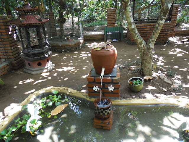 Bali Kaffeplantage30