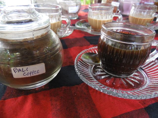 Bali Kaffeplantage50